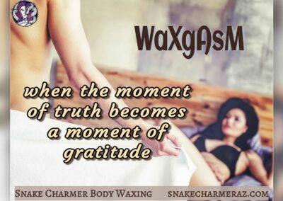Snake Charmer Body Waxing - Waxgasm Meme
